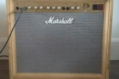 Custom Marshall amp casing